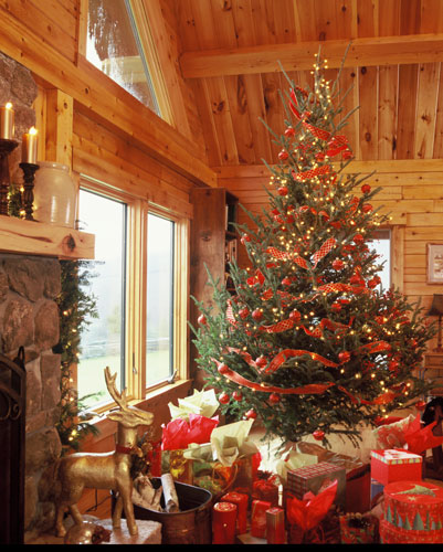 Georgetown log home with Christmas tree