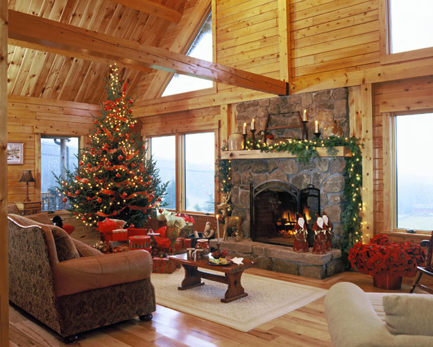 Georgetown log home showing fireplace